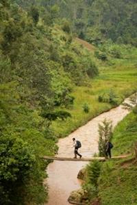 Rwanda Safaris _About Rwanda